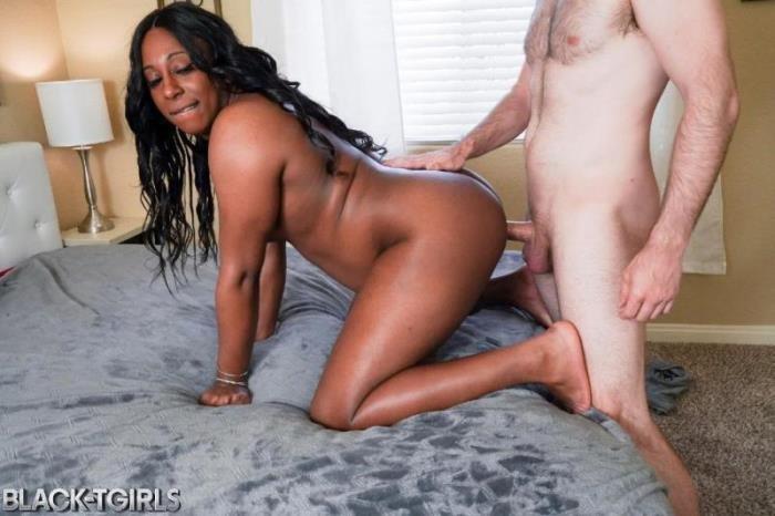 Fucking Black Tgirl