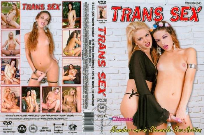 Trans porno sex Trans Sex